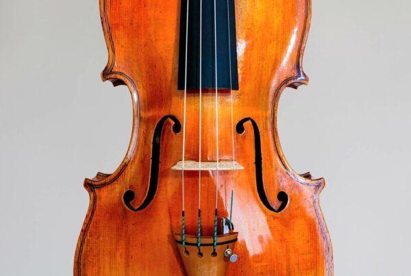 Sgarabotto maple violins copy 2