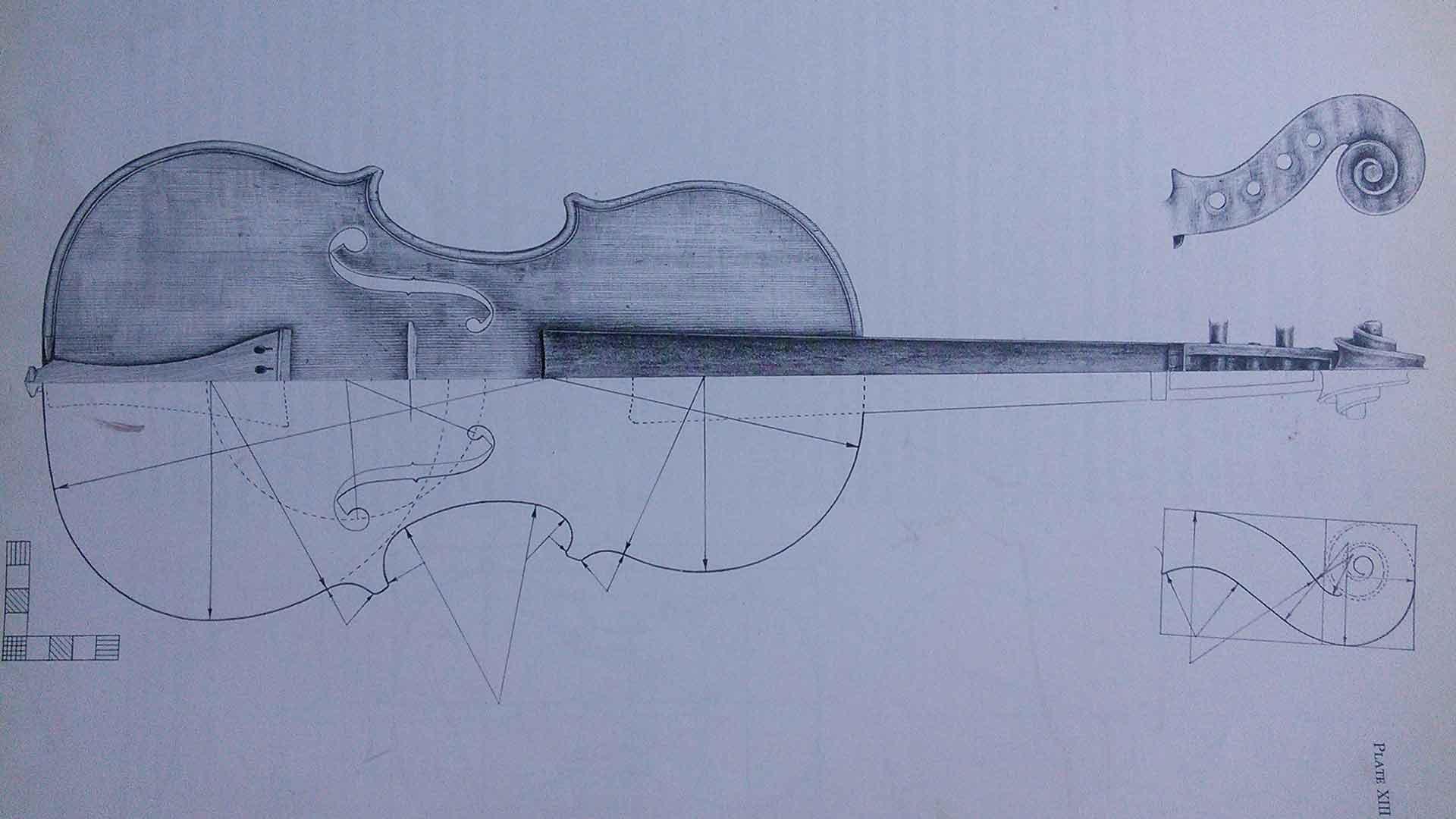 FAQ Maple Violins