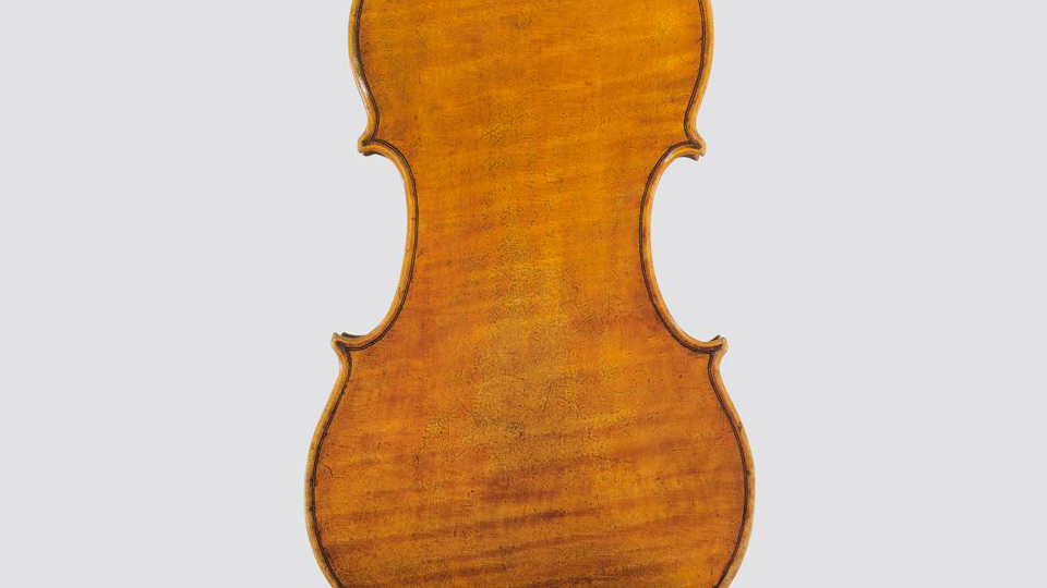 maple violins